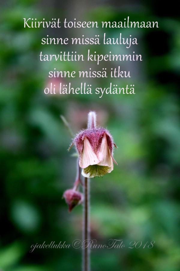 Runotalon voimakortti Kiirivät toiseen maailmaan