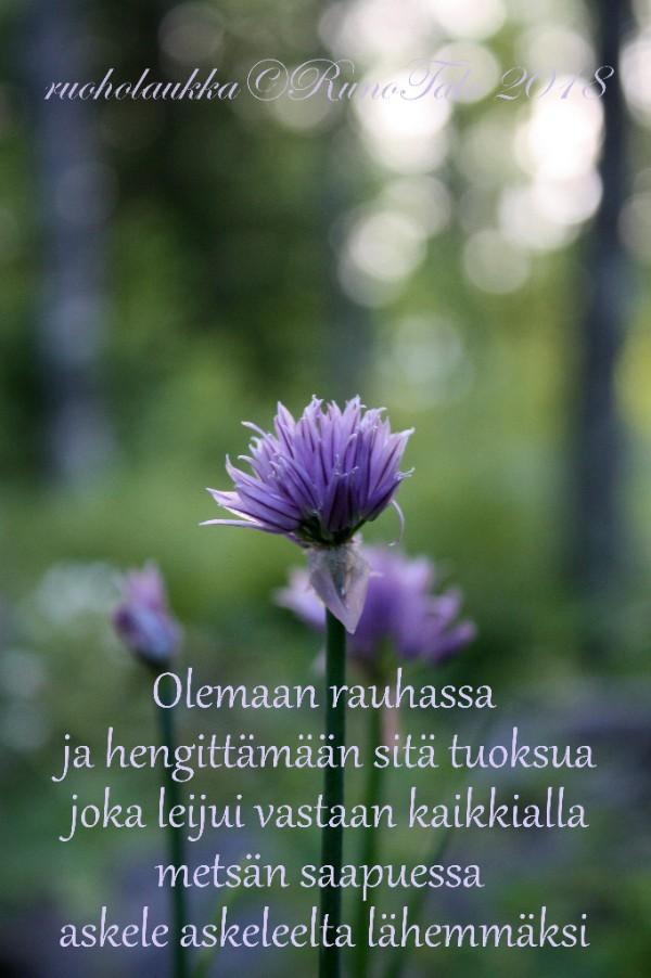 Runotalon voimakortti Olemaan rauhassa ja hengittämään