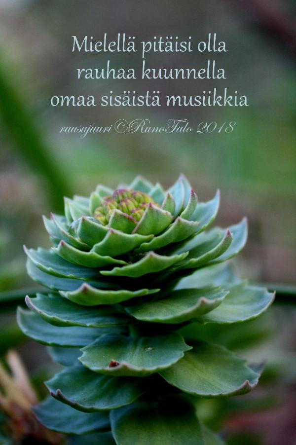 Runotalon voimakortti Mielellä pitäisi olla rauhaa