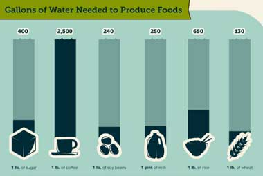 seametrics farm water infographic