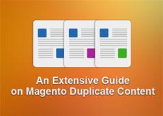 Magento duplicate content guide