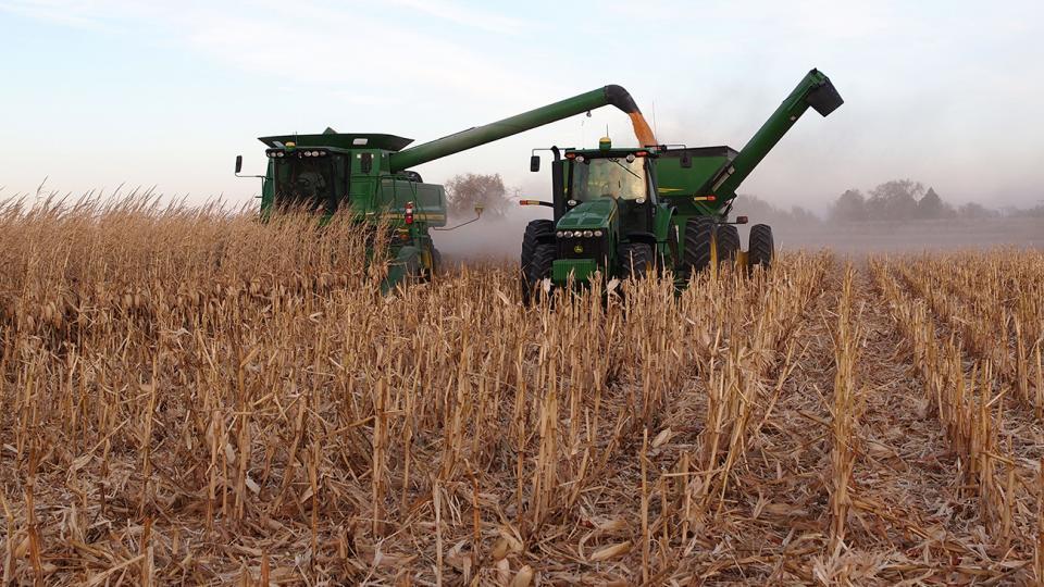 Corn harvest in the Nebraska Panhandle
