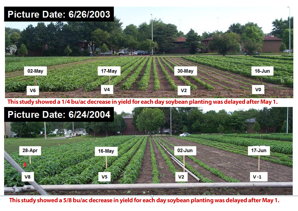 Research plots of various soybean planting dates