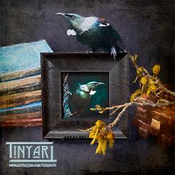TinyArt featuring a tūī in a still-life setting