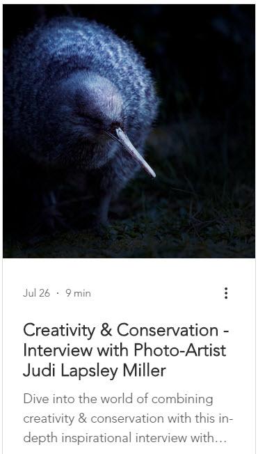 Screenshot of excio blog