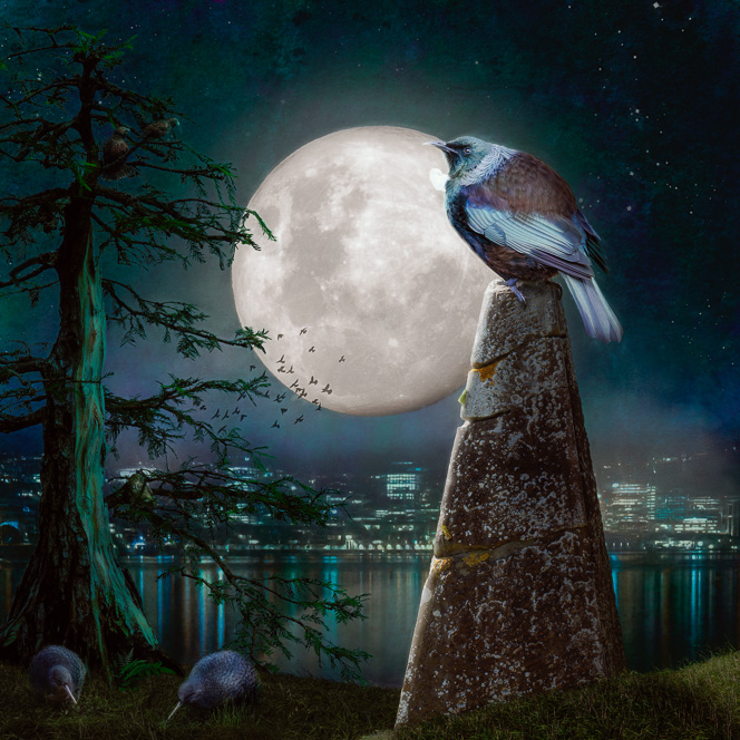 Nightlife - photoart featuring Wellington City harbour view at night and native wildlife