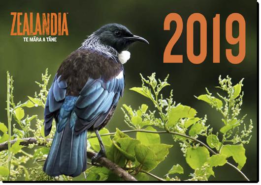 Zealandia 2019 calendar cover featuring a tūī perched on muehlenbekia