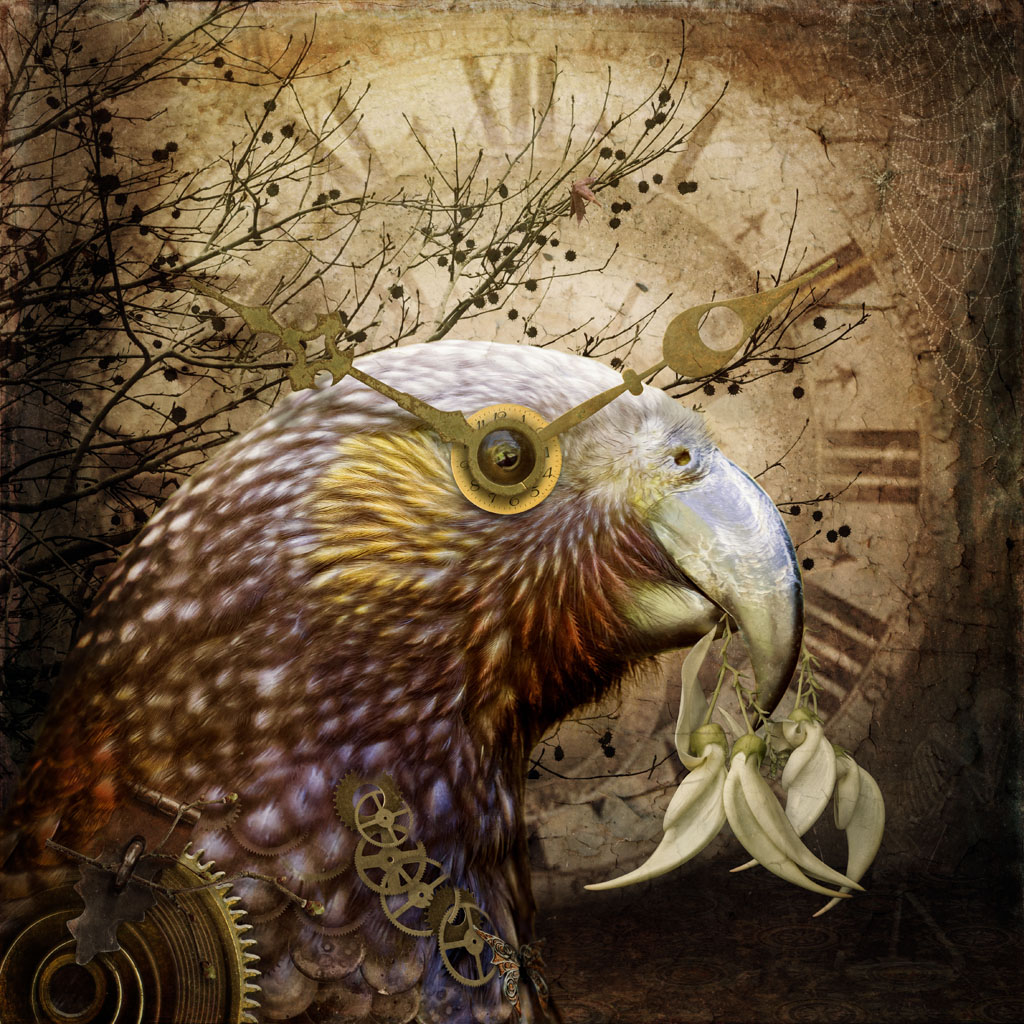 Photo-art of kākā in profile holding kakabeak flowers. She has a steampunk costume on feature clock pieces.