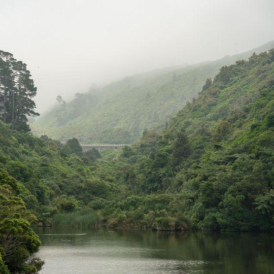 Zealandia lower lake and valley on a smokey day
