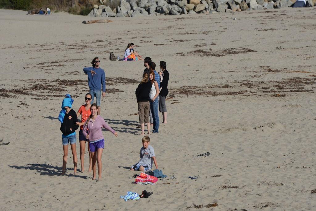 Photo: Beach goes in Santa Cruz, Calif. Credit: Mark Shwartz, Stanford