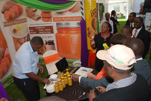 African Potato Association Conference in Kenya
