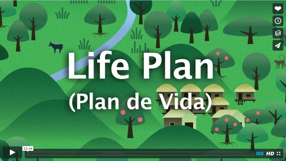 Life Plan (Plan de Vida)