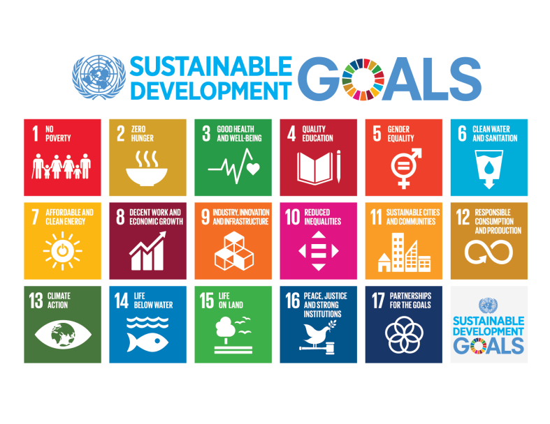The 17 Sustainable Development Goals of the 2030 Agenda
