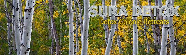 detox newsletter