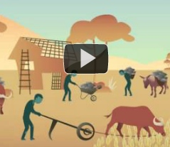 Vídeo del Día Mundial del Saneamiento