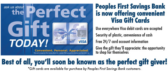 Visa Gift Cards Make the Perfect Gift