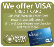 We Offer Visa