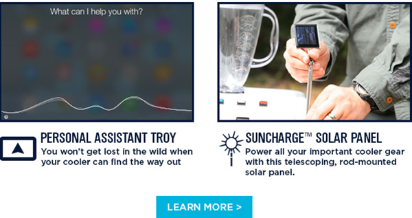 Personal Assistant Troy & Suncharge Solar Panel