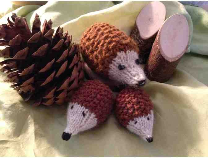 Hand Knit Hedgehog Family  https://www.biddingforgood.com/auction/item/Item.action?id=205803886