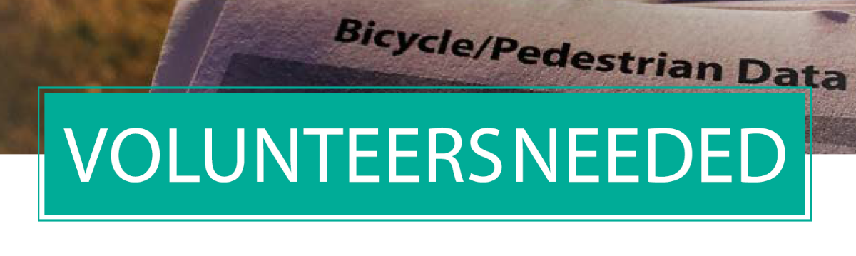 Bike Counts Flyer