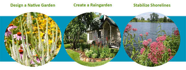 Photos showing a native garden, rain garden and stabilized shoreline.