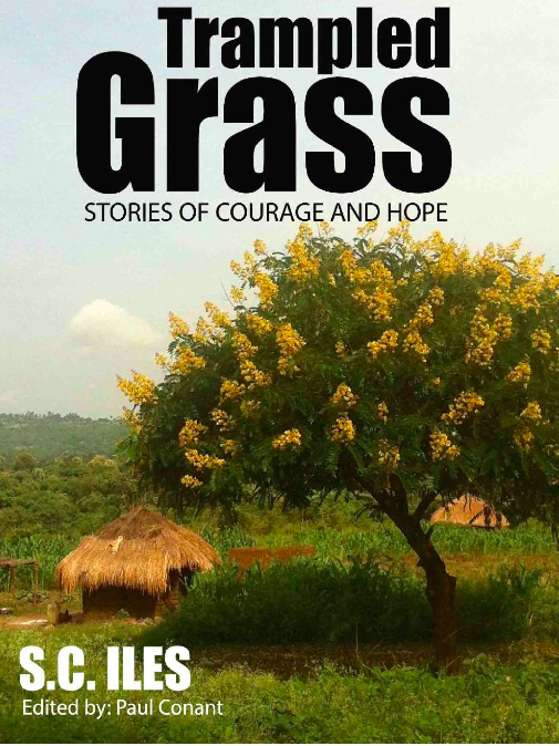 Cover of Trampled Grass