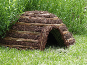 Igloo Hedgehog Home