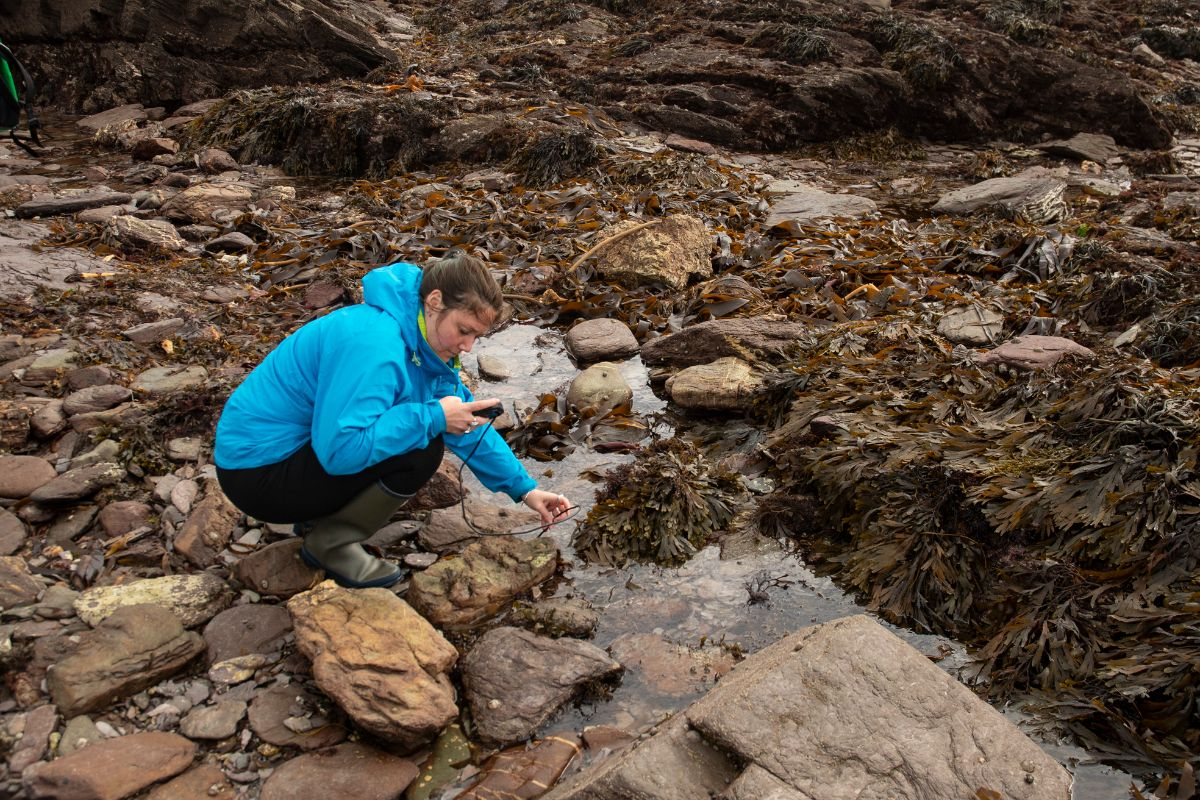 Hattie exploring rockpools with an endoscope