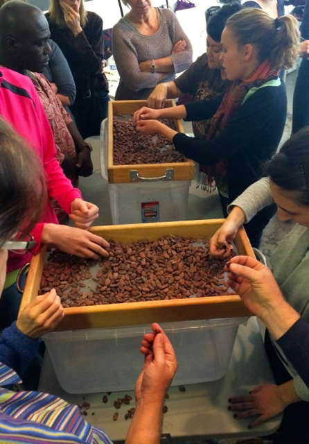 Bean sorting at last year's chocolate making workshop.