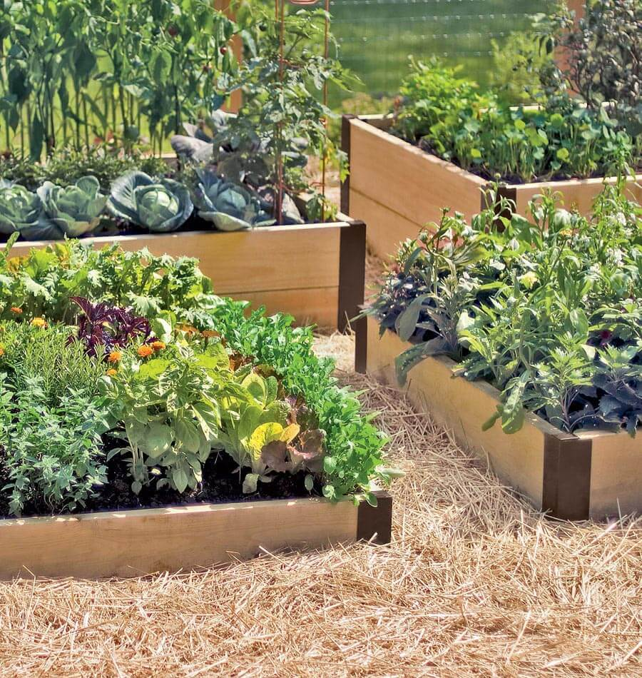 Image Raised Bed Corners