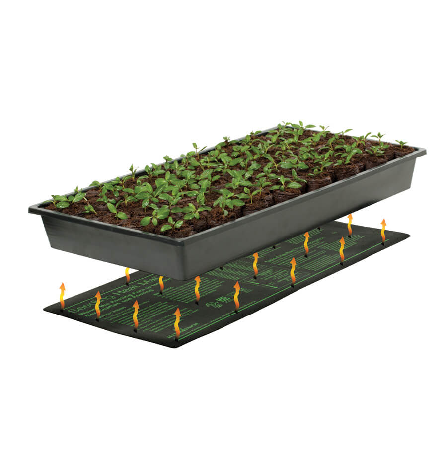 Seedling Warmers