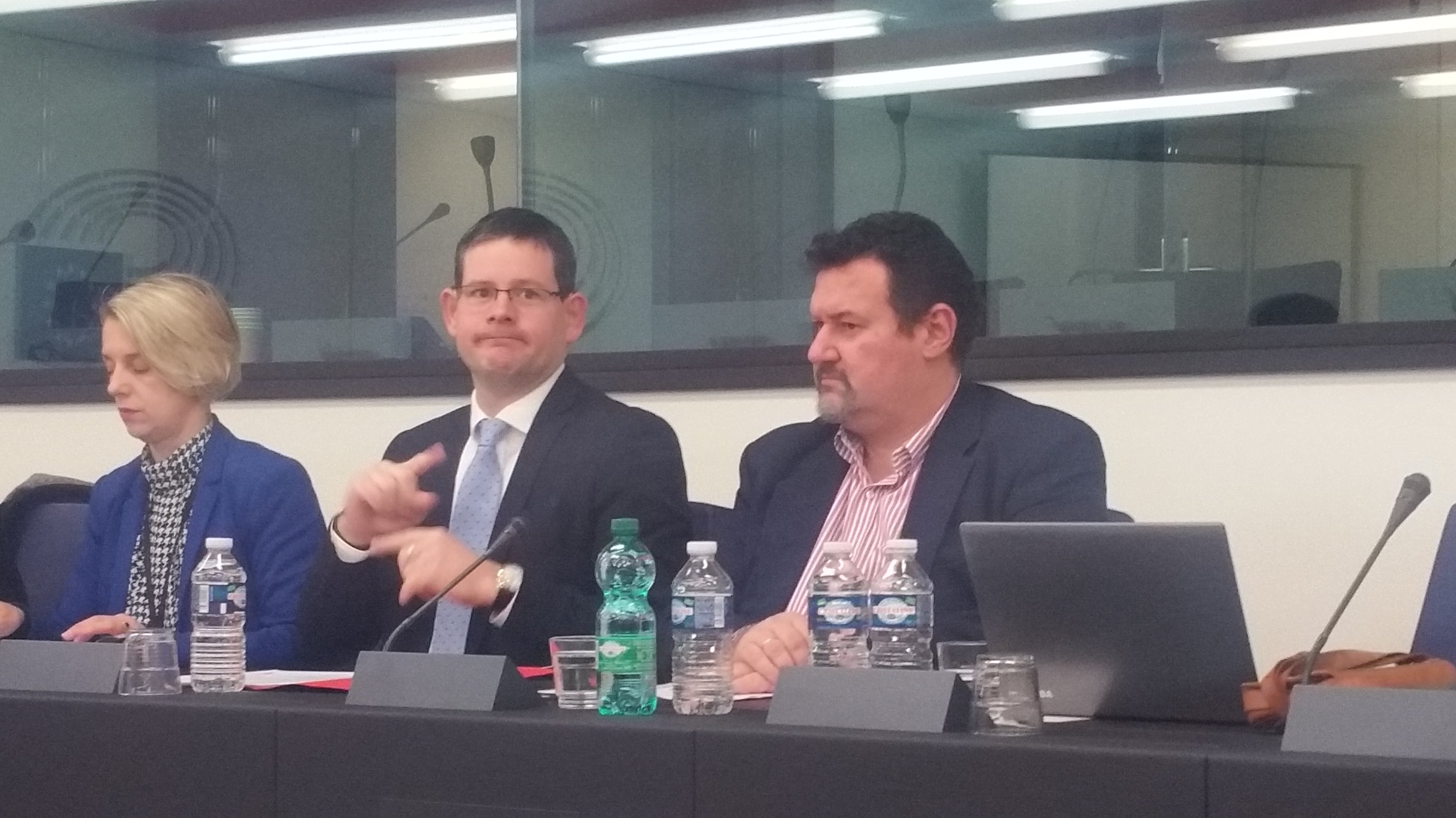 MEPs Helga Stevens and Adam Kosa together with EDF Executive Member, Yannis Yallouros, during the meeting in Strasbourg