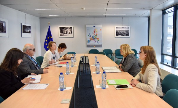 EDF delegation discussing with Commissioner Cretu