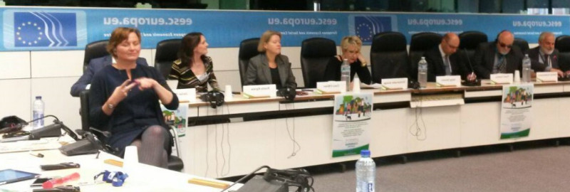 Participants in the EESC event