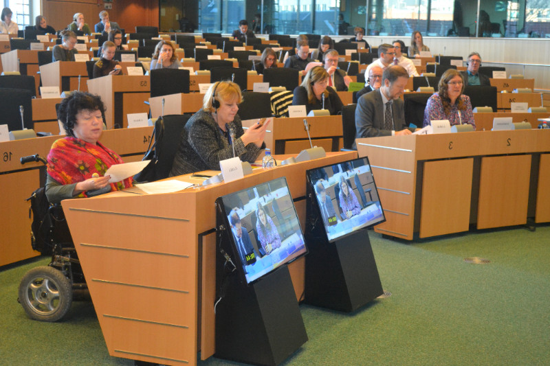 Gunta Anca from EDF, Jan Jarab from OHCHR, Diane Kingston from UN CRPD Committee and other participants of the meeting