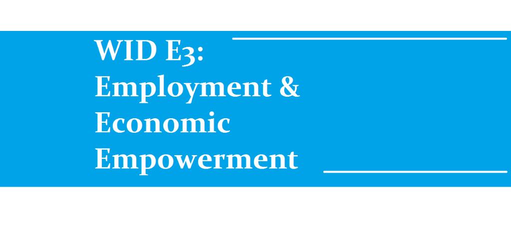 "A banner reading ""WID E3: Employment & Economic Empowerment"""