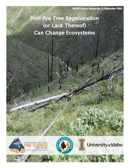 Photo cover of science review showing a grassy slope with fallen dead trees