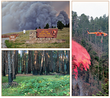 Fire and Firefighting National Park Service Images