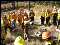 Fire students in the field