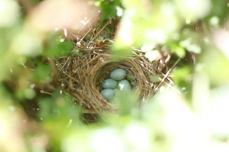 Why I avoid nesting closures