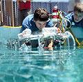 World Ocean Radio 237: Citizen Science