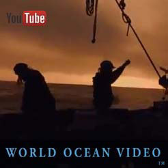 World Ocean Journal e-mag World Ocean Observatory