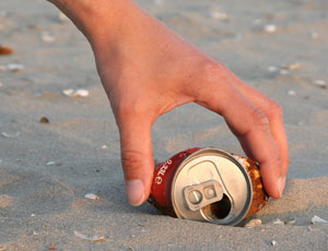 Find a Beach Clean Up