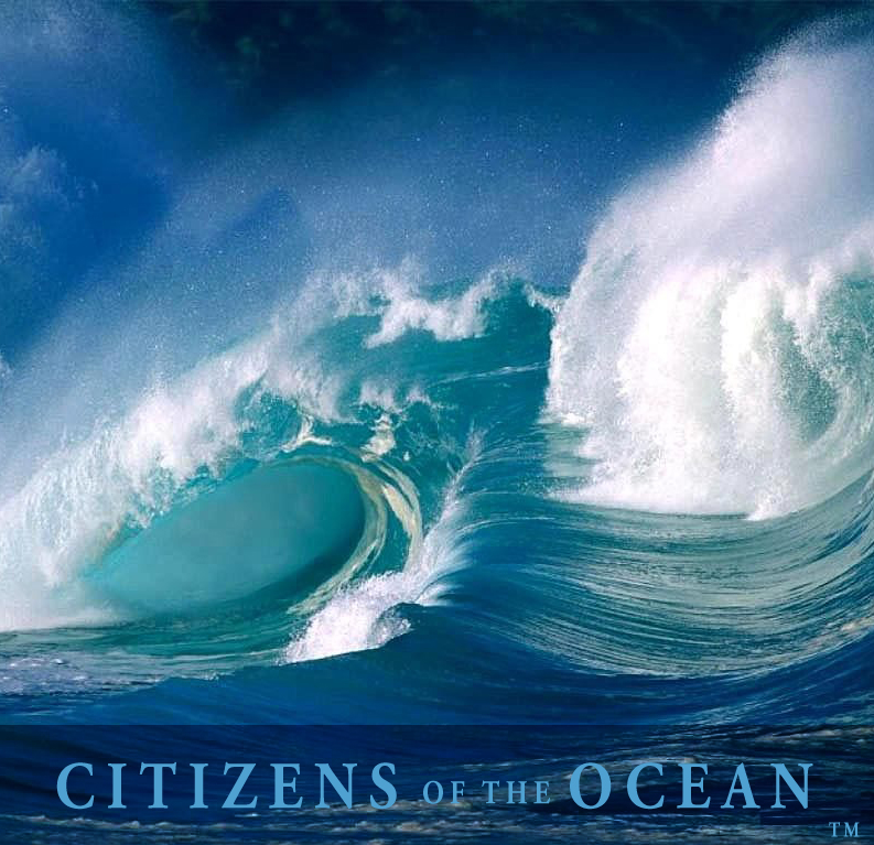 Citizens of the Ocean | World Ocean Observatory