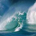 205th Episode of World Ocean Radio