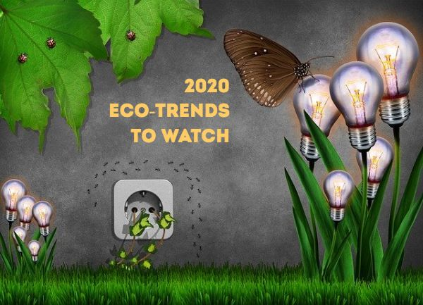 Eco-Trends to Watch