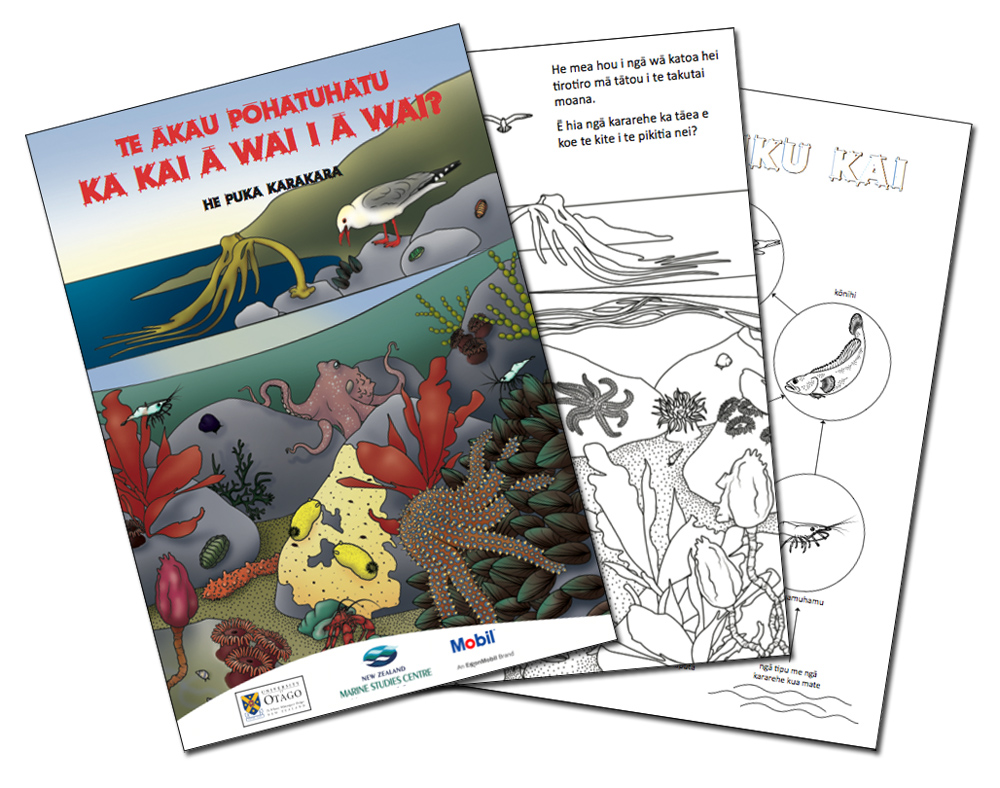 Maori colouring book