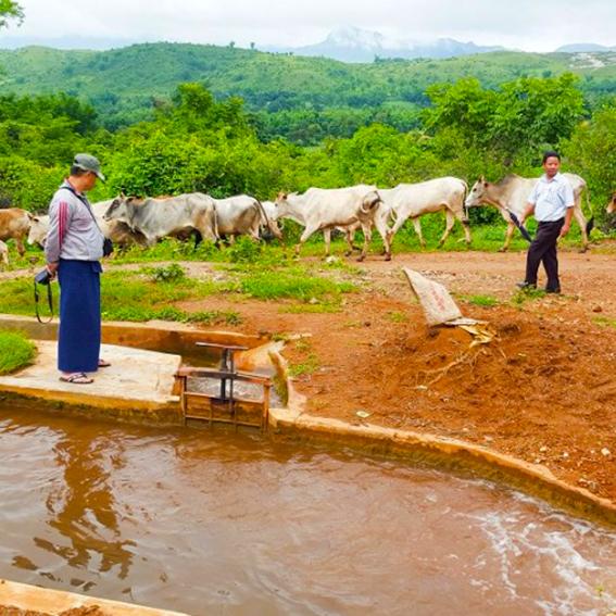 Myanmar Hydro Plant