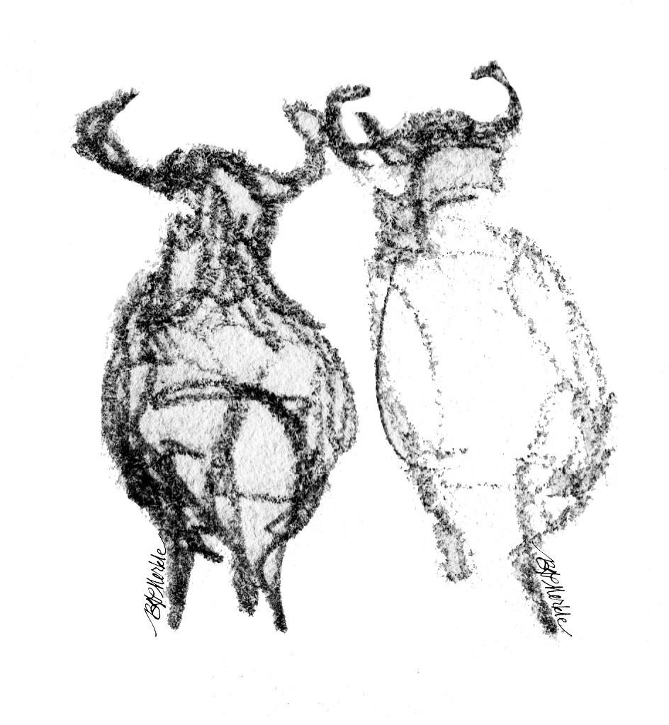 Illustration: prairie dog