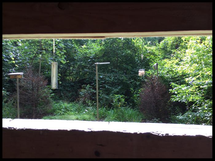 Mariton Wildlife Sanctuary bird blind